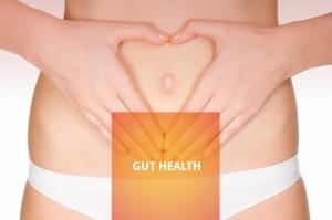 Slides_Health_GutHealth_21